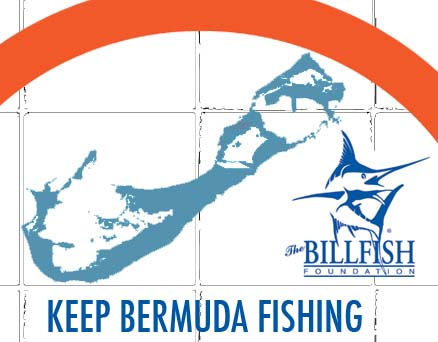 Keep Bermuda Fishing