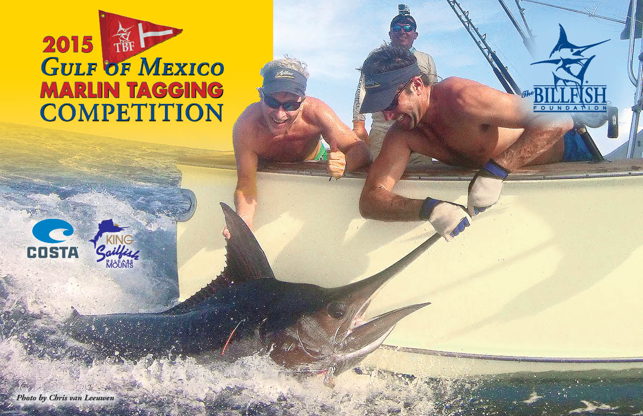 GOM Marlin Tagging Competition 2015